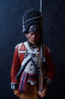 7th Regiment of Foot - SALE - RRP £43